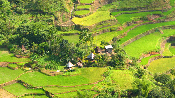 Filippinerna runt